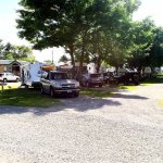 Shady, green grass pull-thru RV sites