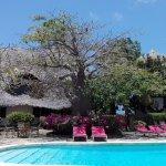Flamingo Villas Club Photo