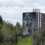 Wolf Mural from visitors' center.