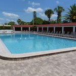 One of the largest pools in Siesta Key.  Heated, too!