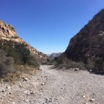 Red Rock Canyon National Conservation Area Foto