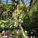 Inside Botanical Garden