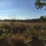 The Gettysburg battlefield.