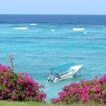 Photo de Leisure Lodge Beach and Golf Resort