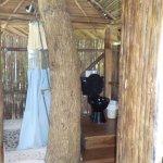 Photo de Al Natural Resort