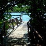 Foto de Parque Xel-Há