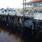Old Fisherman's Wharf Foto