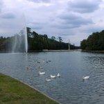 Photo of Hermann Park