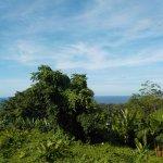 Foto de Red Frog Beach Island Resort & Spa