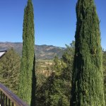 Breathtaking views only winery offering lift to the top.