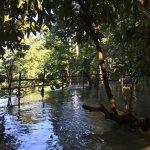 Kuang Si Falls Foto