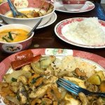The delicious variety of food dishes available
