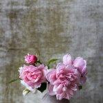 En rose et gris nouvelle déco cosy