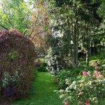Garden Vista Kamahi Cottage
