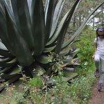 Tierraventura Ecoturismo  Day Tours Foto