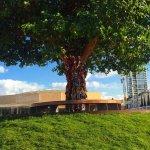 העץ המפורסם של הכיכר לבוש סמורטוטים