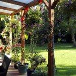 Il giardino dell'hotel: fiori, sole e una famiglia di scoiattoli!