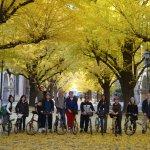 Tokyo Great Cycling Tour Foto