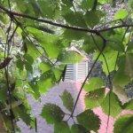 Au Jardin d'Ozanne Bild