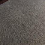 Carpete com manchas