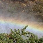 the rainbow from the mist