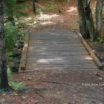 One of several well built small bridge variations along trail at Wiessner Woods.