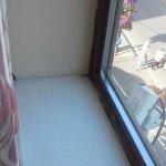 Flies on old window sill