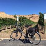 Electric bike near a vineyard