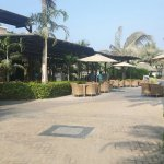 Foto de Sofitel Dubai The Palm Resort & Spa