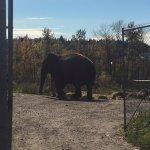 Photo de Valley Zoo