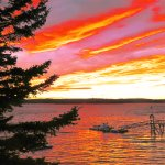Spruce Point Inn Resort and Spa Foto