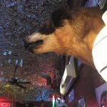 The real thing right down to the eerily stuffed St. Bernard. While not on the menu, they do have