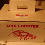 These are the carry-on boxes both Alma Lobster Shop & Sobey's sell.