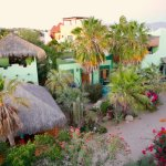 The garden oasis at Casa Verde