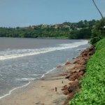 Grand Hyatt Goa Foto