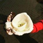Photo of Gelateria peccati di gola lampedusa