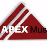 Come Visit the APEX Museum