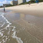 Beach by hotel
