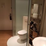 Yes, that's your toilet in your room. Granted it has a glass door..and there is a curtain, but s