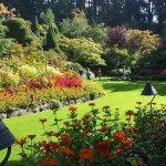 Sunken garden area