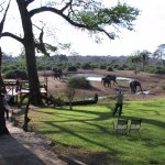 CHOBE NATIONAL PARK: vista dal Lodge