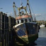 Photo de Rye Harbour Nature Reserve