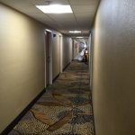 Quality Inn And Suites Detroit Warren Tech Center Foto