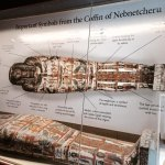 Egyptian Mummies and Coffins