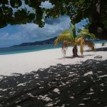 A shady spot on Grand Anse beach adjacent to the hotel