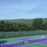Теннисные корты Williams college