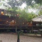 Anavilhanas Jungle Lodge Foto