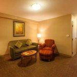 Photo of Hilton Garden Inn Chicago/Tinley Park