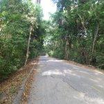 camino hacia el parqueadero