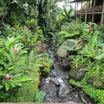 Foto de Los Lagos Hotel Spa & Resort